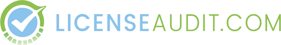 License Audit